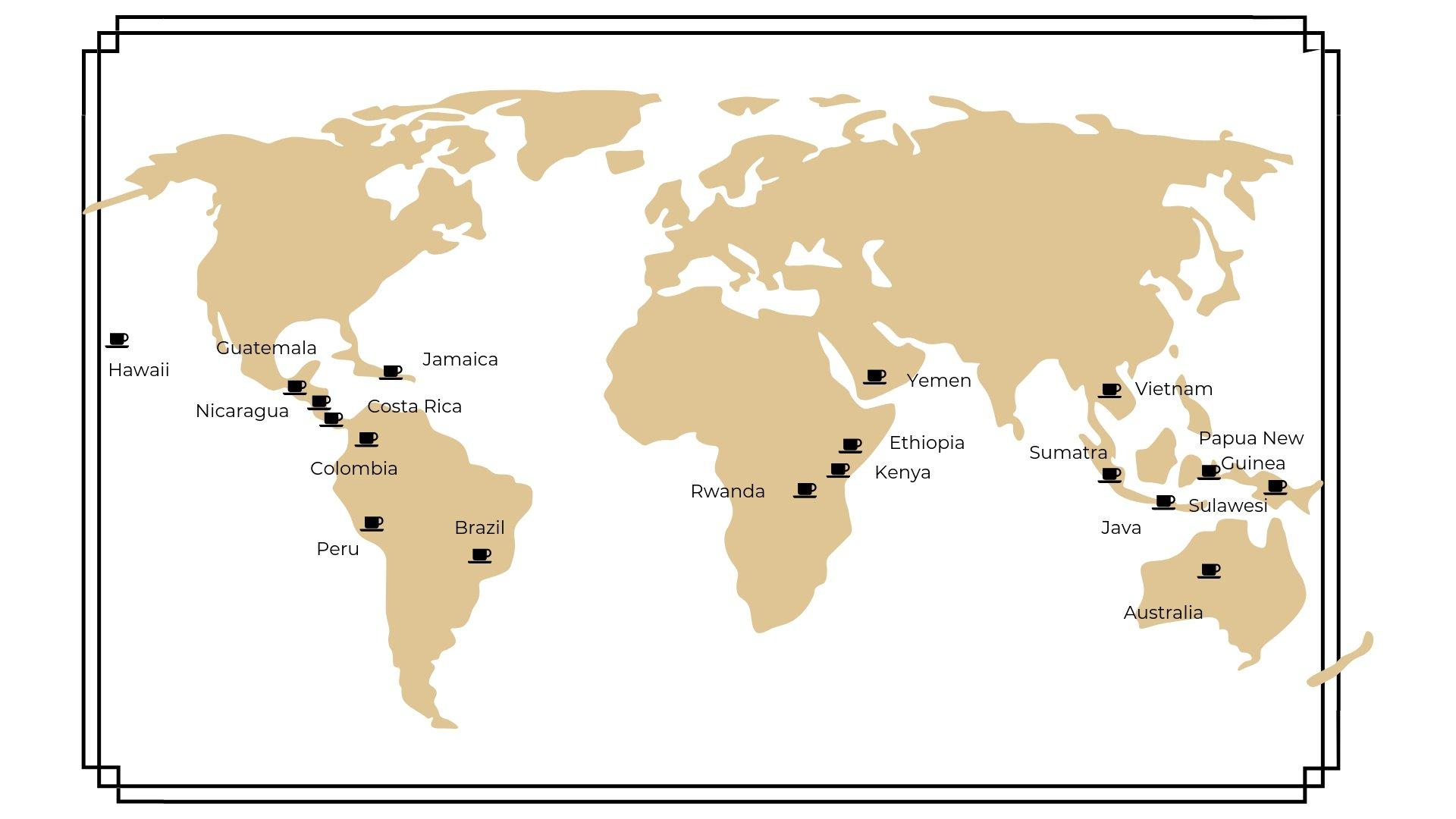 Coffee bean types around the world
