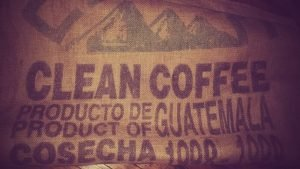 3 Best Guatemalan Coffee Brands: Ultimate Diversity In A Cup
