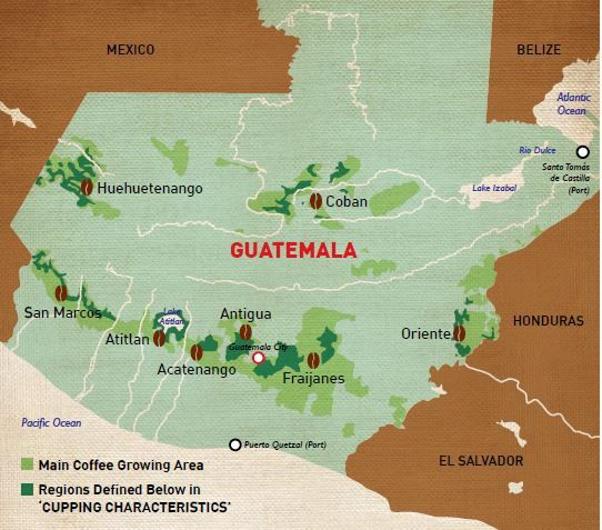 guatemala coffee regions